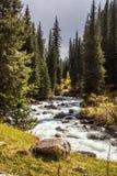Montañas río y bosque en sol Foto de archivo libre de regalías