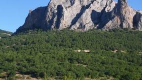 Montañas rocosas cubiertas con la vegetación verde contra el cielo azul metrajes