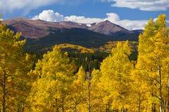 Montañas rocosas de Colorado y álamos tembloses de oro en caída Imágenes de archivo libres de regalías