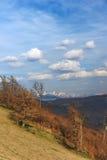 MONTAÑAS ROCOSAS, Ucrania, vertical Foto de archivo libre de regalías