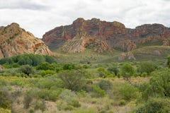 Montañas rojas en la reserva de naturaleza de Rooiberg Fotografía de archivo libre de regalías