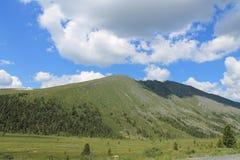 Montañas, Siberia del este foto de archivo libre de regalías