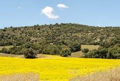 Montañas situadas en Cádiz Foto de archivo libre de regalías