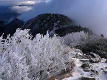 Montañas tempranas del invierno Imágenes de archivo libres de regalías