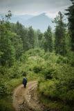 Montañas ucranianas Imágenes de archivo libres de regalías