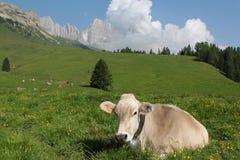 Montañas Véneto Italia de Dolomiti Fotos de archivo