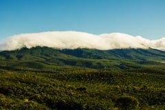 Montañas verdes Imágenes de archivo libres de regalías