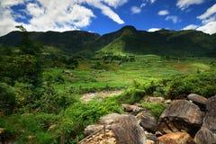 Montañas verdes de Vietnam Imagen de archivo