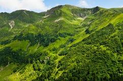 Montañas verdes del verano Fotos de archivo libres de regalías
