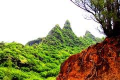 Montañas verdes en Kauai Fotos de archivo libres de regalías