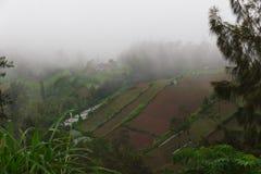 Montañas verdes, selva y granjas colgantes asiáticas fotografía de archivo