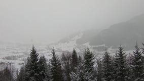 Montañas y árboles Nevado