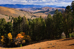 Montañas y bosque a lo largo del paso de Lemhi, Montana Imagenes de archivo