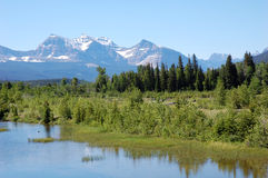 Montañas y bosques Foto de archivo libre de regalías