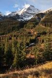Montañas y bosques de la nieve Fotografía de archivo