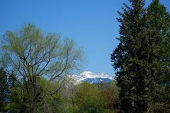 Montañas y bosques - Missoula, Montana imagen de archivo libre de regalías