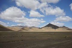 Montañas y cabras en Tíbet Imagenes de archivo