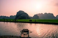 Montañas y campos del arroz de Vietnam del norte en la puesta del sol imagenes de archivo