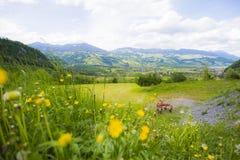 Montañas y flores Imágenes de archivo libres de regalías