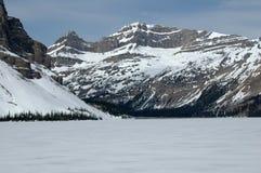Montañas y glaciar americanos de NNorth Fotografía de archivo libre de regalías