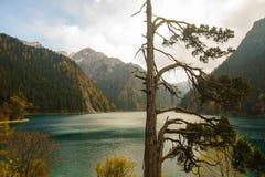 Montañas y lagos en el valle Jiuzhaigou Fotos de archivo