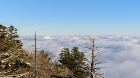 Montañas y niebla de Deogyusan en invierno Imagen de archivo