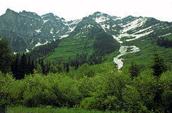 Montañas y nieve verdes del verano fotografía de archivo