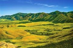 Montañas y paisaje del medow Fotografía de archivo libre de regalías