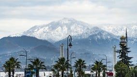 Montañas y palmeras imagenes de archivo