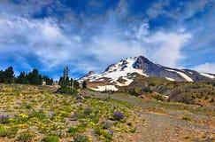 Montañas y prado Foto de archivo libre de regalías