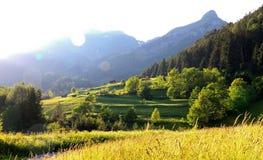 Montañas y prados en sol de la tarde Foto de archivo
