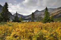 Montañas y una hierba. Fotos de archivo libres de regalías