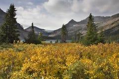 Montañas y una hierba. Fotografía de archivo libre de regalías