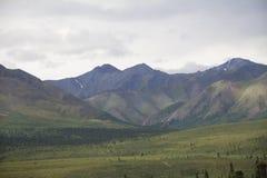 Montañas y valle del parque nacional de Denali Imágenes de archivo libres de regalías