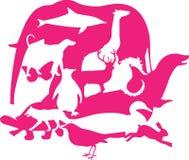 montaż zwierzęcych obraz royalty free