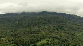 Monta?as cubiertas con la selva tropical, Filipinas, Camiguin almacen de video