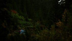 Monta?a Forest Valley ?rboles de pino con el bosque almacen de video