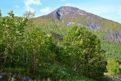 Montaña en Noruega Fotos de archivo libres de regalías