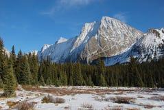 Montaña y prado de la nieve Fotografía de archivo