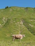 Montañas alrededor del pueblo Schoken Fotografía de archivo libre de regalías