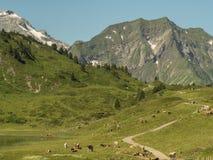 Montañas alrededor del pueblo Schroecken Imagenes de archivo