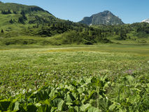 Montañas alrededor del pueblo Schroecken Foto de archivo