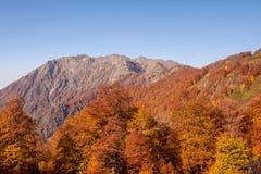 Montañas de Autumn Caucasian Fotografía de archivo libre de regalías