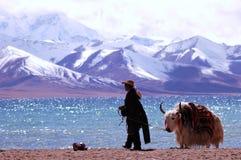 Montañas de la nieve de Tíbet Fotos de archivo libres de regalías