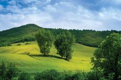 Montañas del campo Imagen de archivo libre de regalías