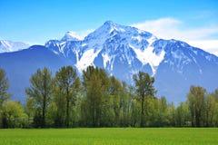 Montañas rocosas Fotografía de archivo