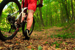 Montada do ciclista do Mountain bike exterior Imagem de Stock