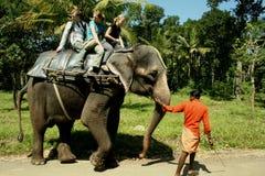 Montada em um elefante imagem de stock
