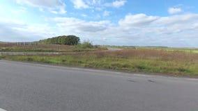 Montada na estrada ao longo de Autumn Corn Field vídeos de arquivo