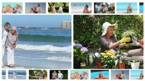 Montage των ηλικιωμένων ζευγών που μοιράζονται τις στιγμές από κοινού απόθεμα βίντεο